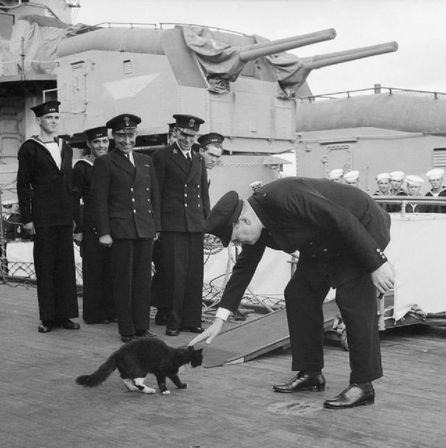 blackie and churchill - naval post- naval news and information