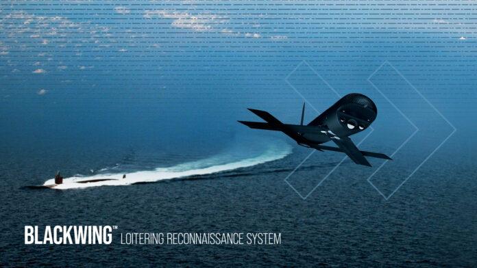 Blackwing UAS (Image Credit: AeroVironment)