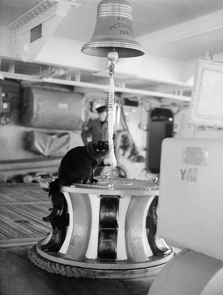 tiddles hms victorious - naval post- naval news and information